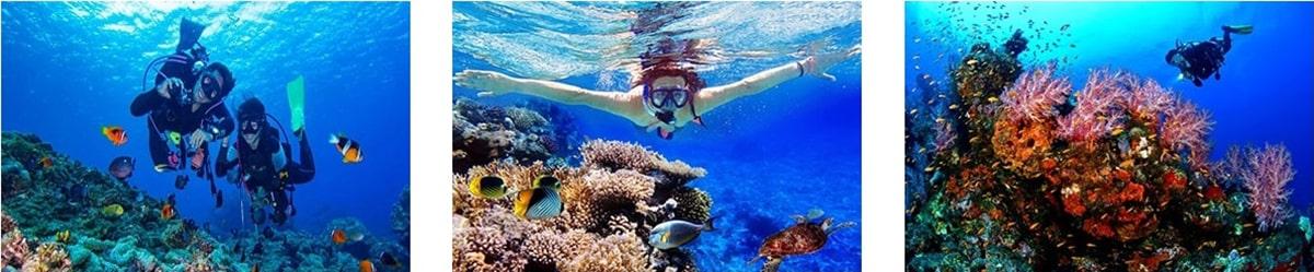 Paket Wisata Pulau Seribu Tahun Baru
