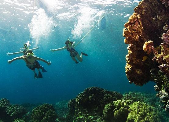 snorkling pulau pelangi