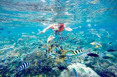 snorkling pulau putri