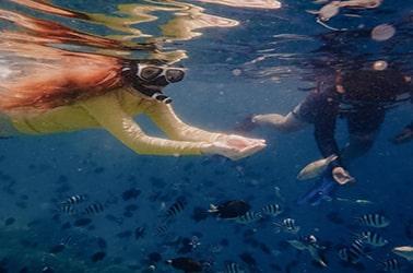 tour pulau payung